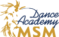 msm dance academy eurostudy