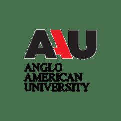 Англо-Американская Академия